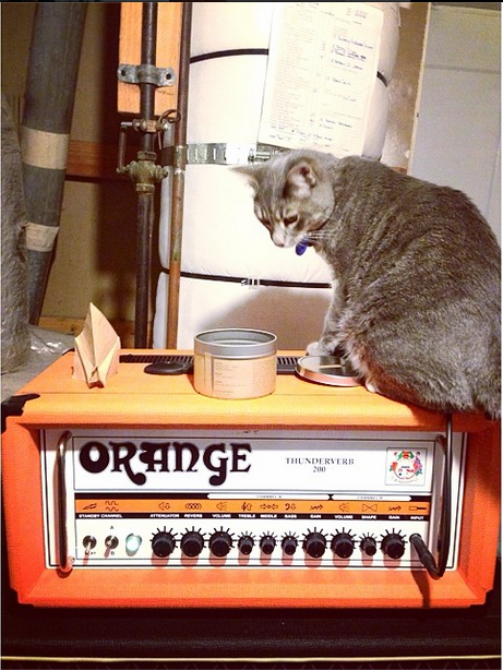 """The problem is cat hair, kitty litter, fur balls, and also your cat hexed your amp because cats are evil."" CatsOnAmps.net is a real website, btw."